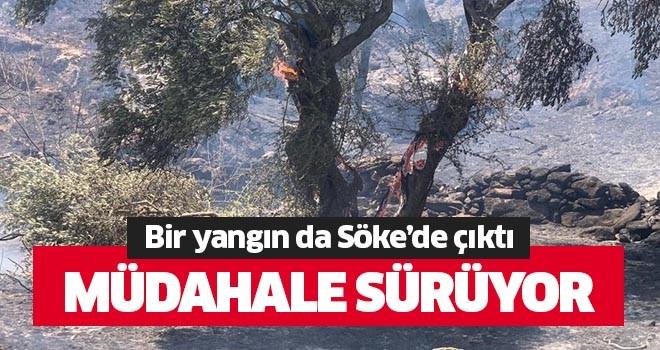 Bir yangın da Söke'de çıktı