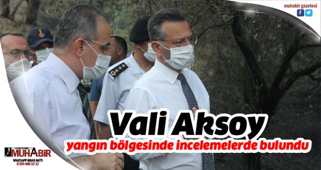 Vali Aksoy, yangın bölgesinde incelemelerde bulundu