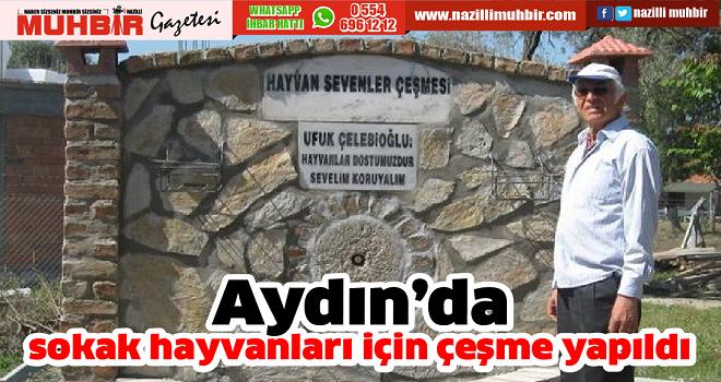 Aydın'da sokak hayvanları için çeşme yapıldı