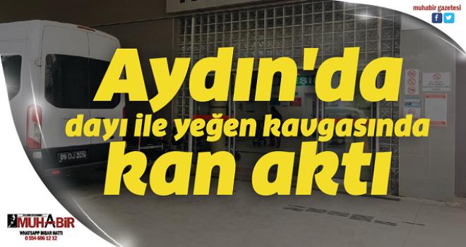Aydın'da dayı ile yeğen kavgasında kan aktı