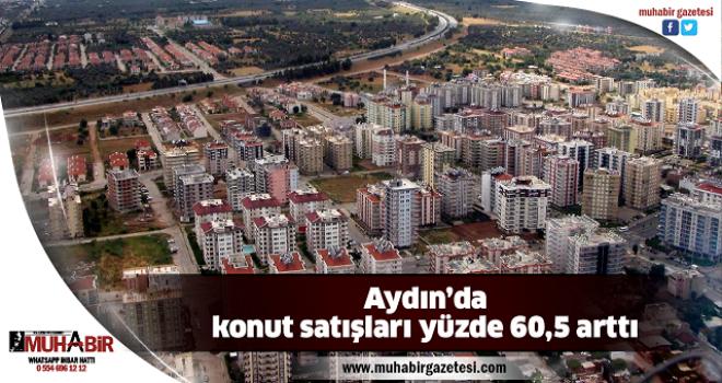 Aydın'da konut satışları yüzde 60,5 arttı