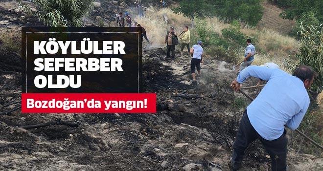 Bozdoğan'da yangın!