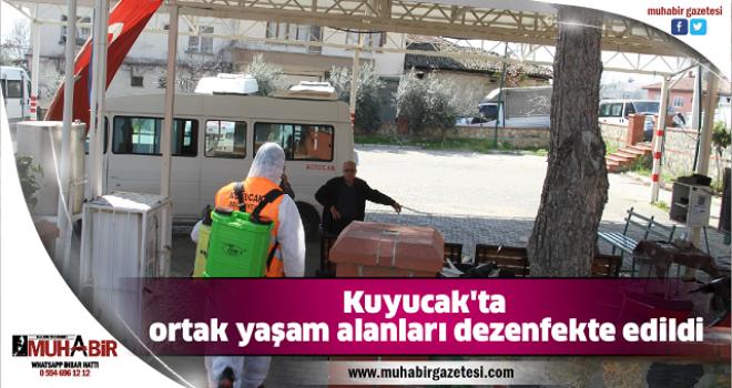 Kuyucak'ta ortak yaşam alanları dezenfekte edildi