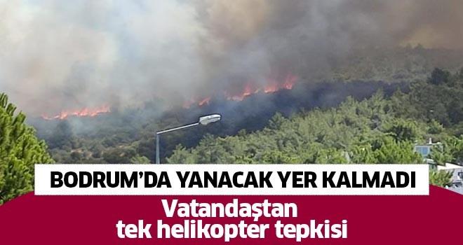 Bodrum'da yine yangın çıktı!