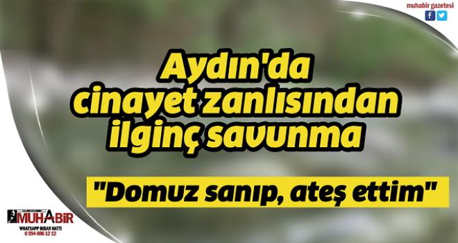 Aydın'da cinayet zanlısından ilginç savunma: