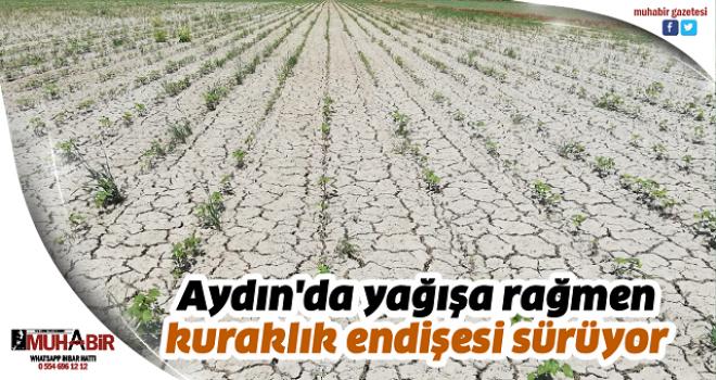 Aydın'da yağışa rağmen kuraklık endişesi sürüyor