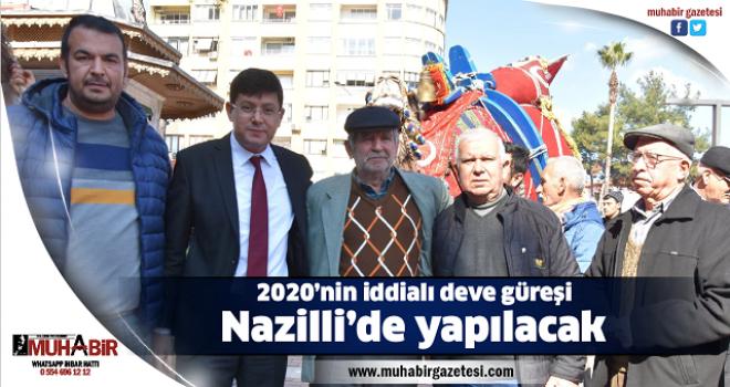 2020'nin iddialı deve güreşi Nazilli'de yapılacak
