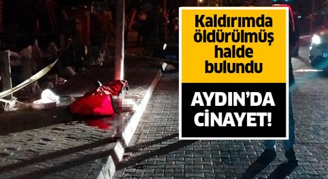 Aydın'da cinayet!