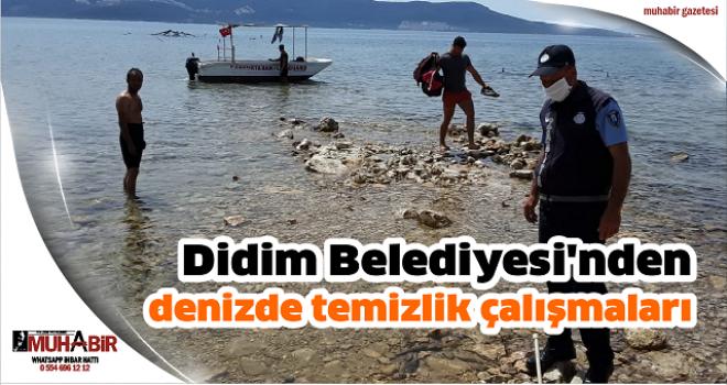 Didim Belediyesi'nden denizde temizlik çalışmaları