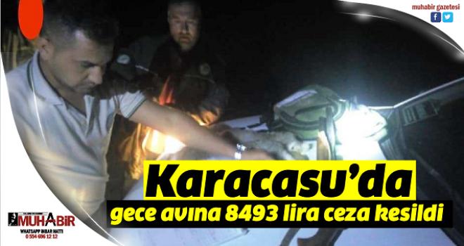 Karacasu'da gece avına 8493 lira ceza kesildi