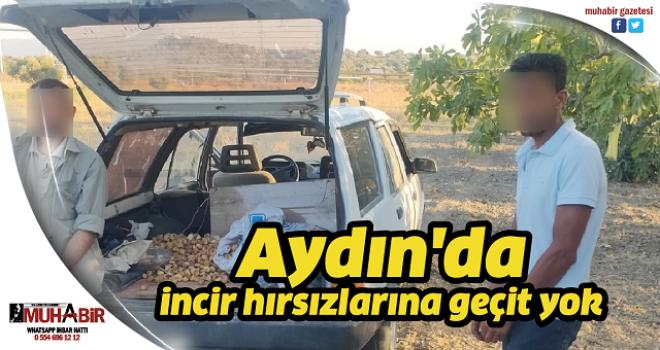 Aydın'da incir hırsızlarına geçit yok