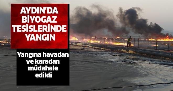Aydın biyogaz tesislerinde yangın
