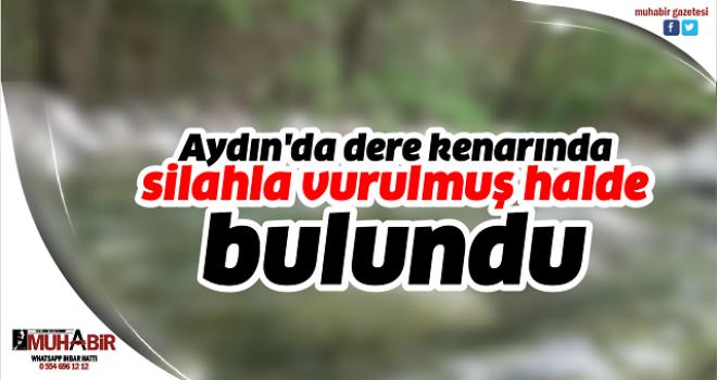 Aydın'da dere kenarında silahla vurulmuş halde bulundu