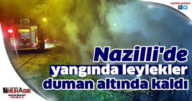 Nazilli'de yangında leylekler duman altında kaldı