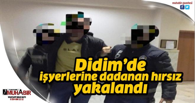 Didim'de işyerlerine dadanan hırsız yakalandı