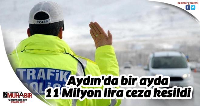 Aydın'da bir ayda 11 Milyon lira ceza kesildi