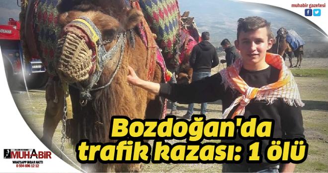 Bozdoğan'da trafik kazası: 1 ölü