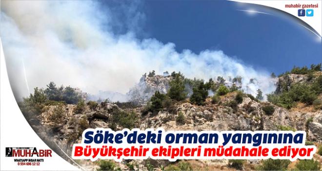 Söke'deki orman yangınına Büyükşehir ekipleri müdahale ediyor