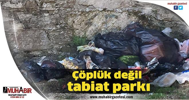 Çöplük değil tabiat parkı