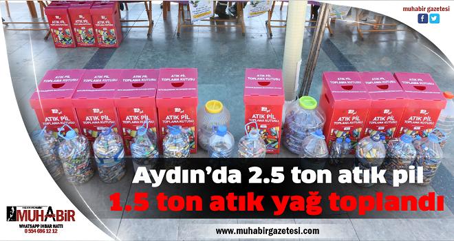 Aydın'da 2.5 ton atık pil, 1.5 ton atık yağ toplandı