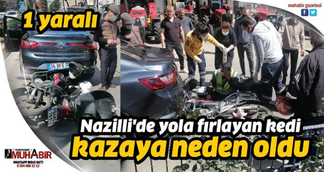 Nazilli'de yola fırlayan kedi kazaya neden oldu 1 yaralı