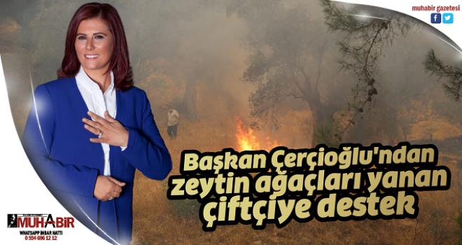Başkan Çerçioğlu'ndan zeytin ağaçları yanan çiftçiye destek