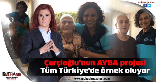 Çerçioğlu'nun AYBA projesi Tüm Türkiye'de örnek oluyor