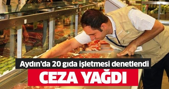 Aydın'da 20 gıda işletmesi denetlendi