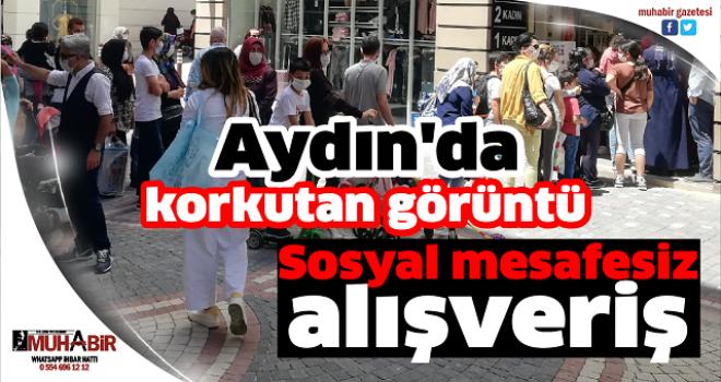 Aydın'da korkutan görüntü