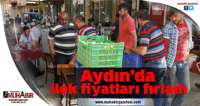 Aydın'da ilek fiyatları fırladı