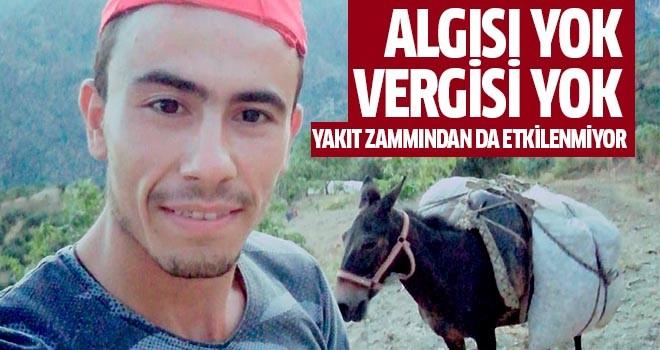 Aydın'da yük hayvanları değerini koruyor