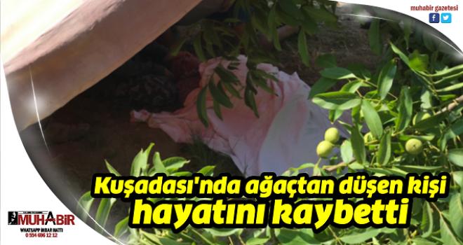 Kuşadası'nda ağaçtan düşen kişi hayatını kaybetti