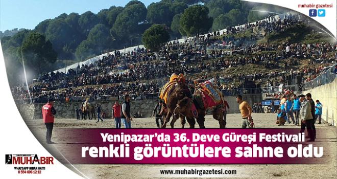 Yenipazar'da 36. Deve Güreşi Festivali renkli görüntülere sahne oldu