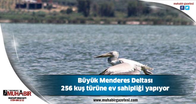 Büyük Menderes Deltası 256 kuş türüne ev sahipliği yapıyor