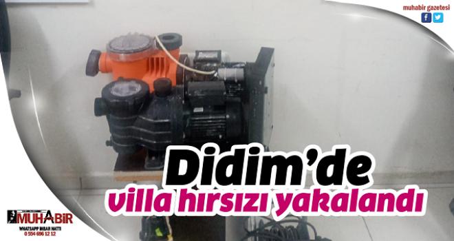 Didim'de villa hırsızı yakalandı