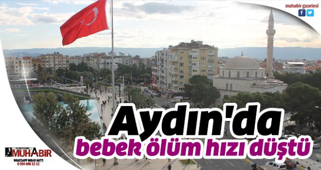 Aydın'da bebek ölüm hızı düştü
