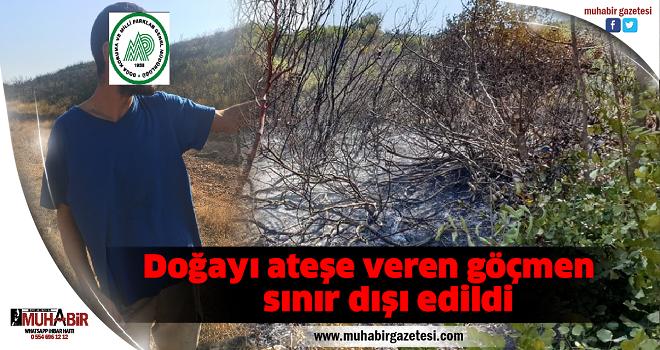 Doğayı ateşe veren göçmen sınır dışı edildi