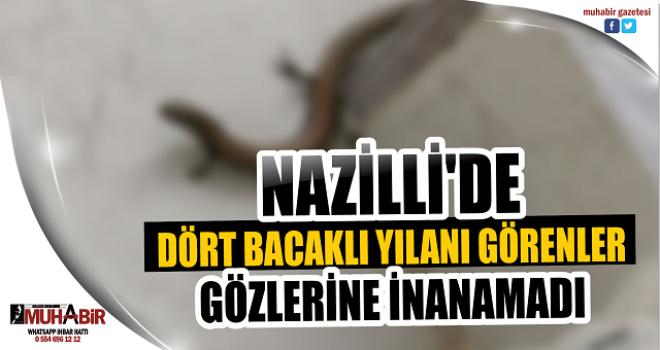 NAZİLLİ'DE DÖRT BACAKLI YILANI GÖRENLER GÖZLERİNE İNANAMADI