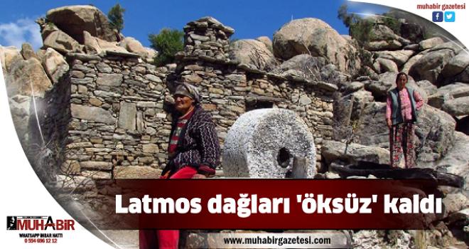 Latmos dağları 'öksüz' kaldı
