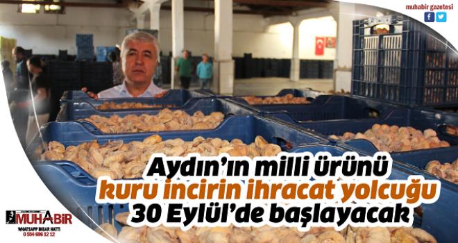 Aydın'ın milli ürünü kuru incirin ihracat yolcuğu 30 Eylül'de başlayacak