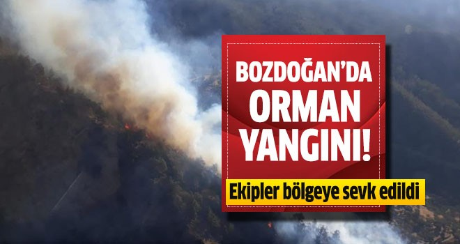 Bozdoğan'da orman yangını çıktı