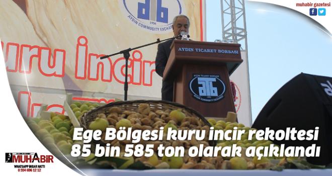 Ege Bölgesi kuru incir rekoltesi 85 bin 585 ton olarak açıklandı