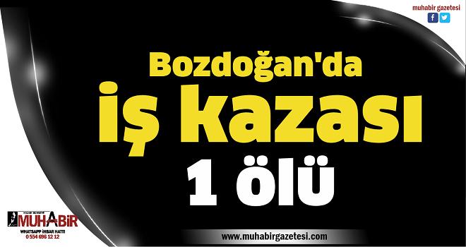 Bozdoğan'da iş kazası: 1 ölü