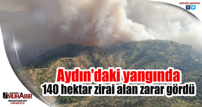 Aydın'daki yangında 140 hektar zirai alan zarar gördü