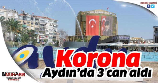 Korona, Aydın'da 3 can aldı