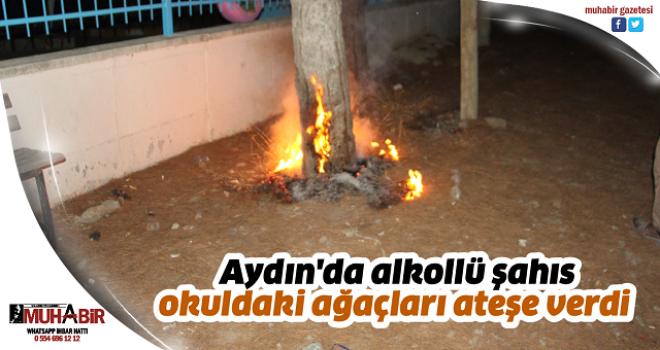Aydın'da alkollü şahıs okuldaki ağaçları ateşe verdi