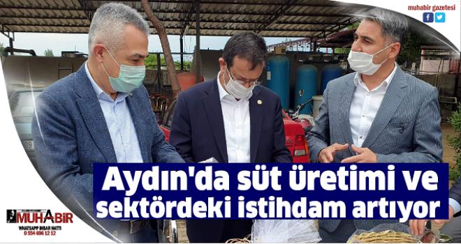 Aydın'da süt üretimi ve sektördeki istihdam artıyor