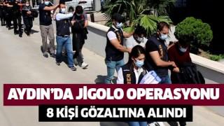 Aydın'da jigolo operasyonu