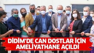 Didim'de can dostlar için ameliyathane açıldı